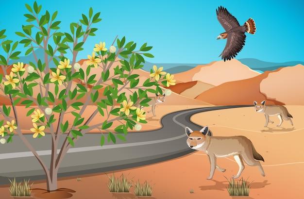 Paisagem de deserto selvagem em cena diurna
