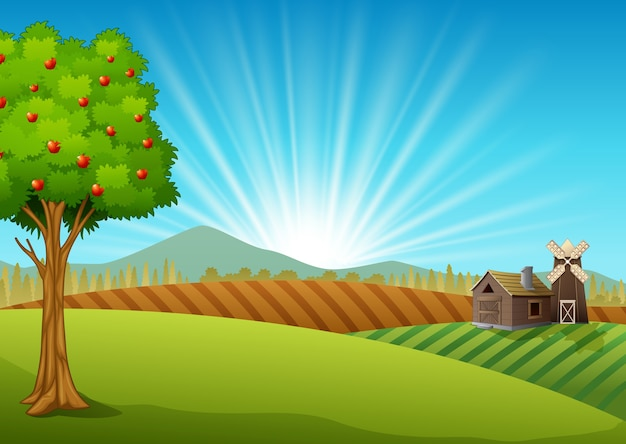 Paisagem de fazenda com campo verde e nascer do sol