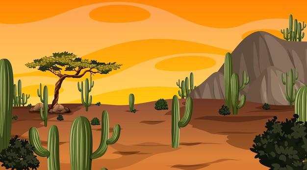 Paisagem de floresta deserta na hora do pôr do sol com muitos cactos