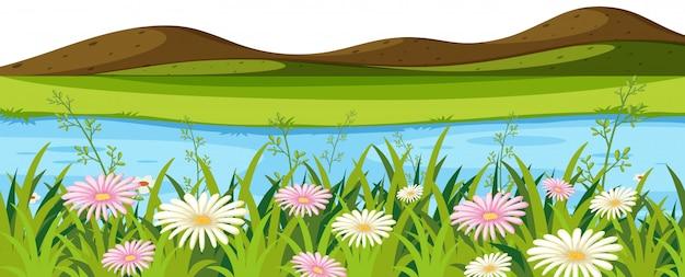 Paisagem de fundo com pequenas colinas e rio