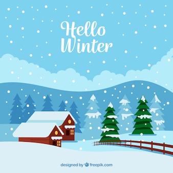 Paisagem de inverno com duas casas