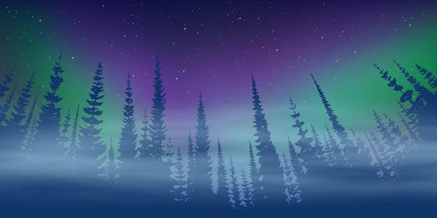 Paisagem de inverno, crepúsculo e luzes polares, floresta e luz do pôr do sol