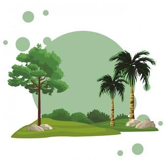 Paisagem de natureza de árvores
