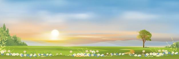 Paisagem de primavera com montanha, céu azul e nuvens panorama campos verdes frescos e pacíficos natureza rural na primavera com grama verde