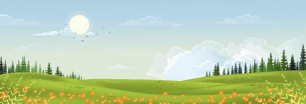 Paisagem de primavera com natureza rural pacífica na primavera com terra de grama selvagem