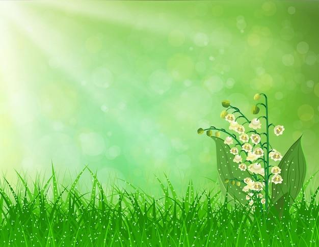 Paisagem de primavera. flores lírio do vale.