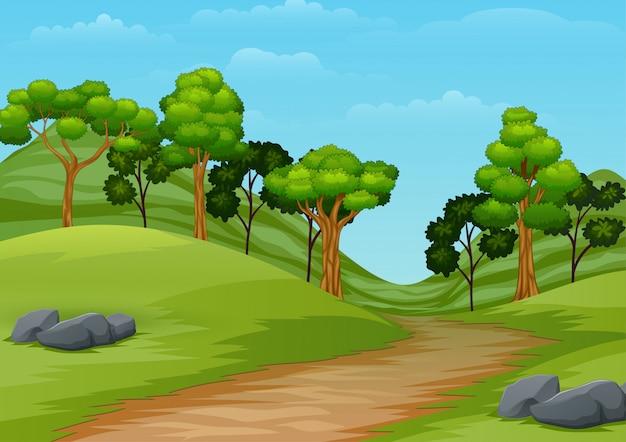 Paisagem de verão dos desenhos animados com trilha de estrada para a floresta