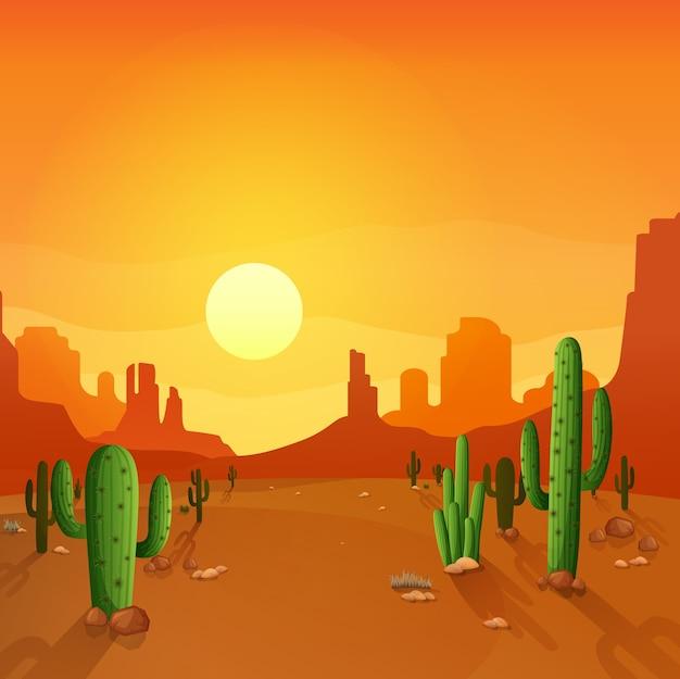 Paisagem do deserto com cactos no fundo por do sol