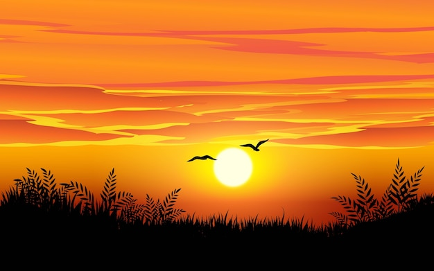 Paisagem do horizonte do pôr do sol com pássaros