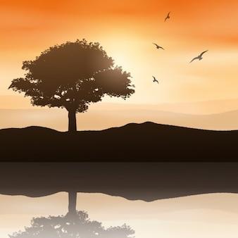 Paisagem do por do sol com árvore e pássaros