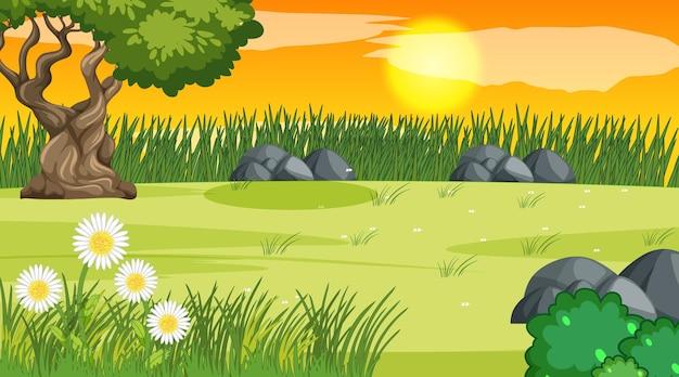 Paisagem em branco do parque natural na hora do pôr do sol