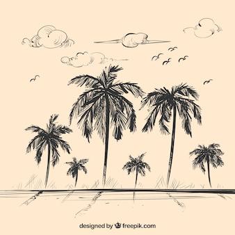Paisagem, esboço, fundo, palma, árvores