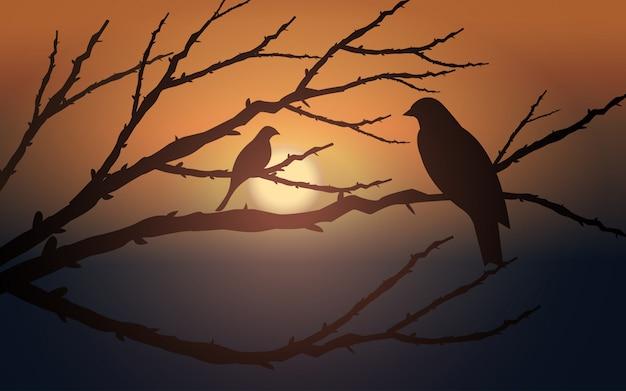 Paisagem por do sol com pássaros em galhos de árvores