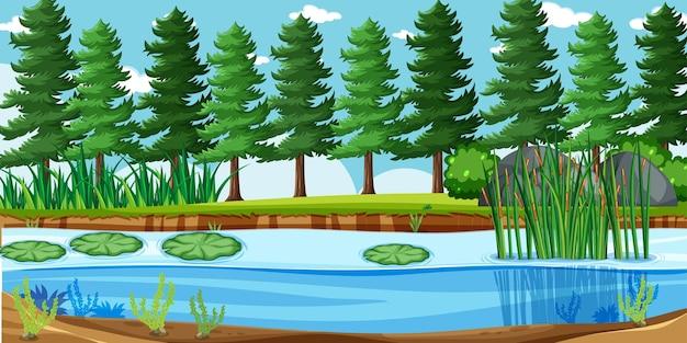 Paisagem vazia em cenário de parque natural com muitos pinheiros e pântanos
