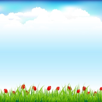 Paisagem verde com grama e tulipa vermelha, plano de fundo