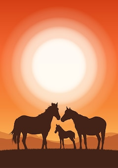 Paisagem vertical com pôr do sol e a silhueta dos cavalos da família.