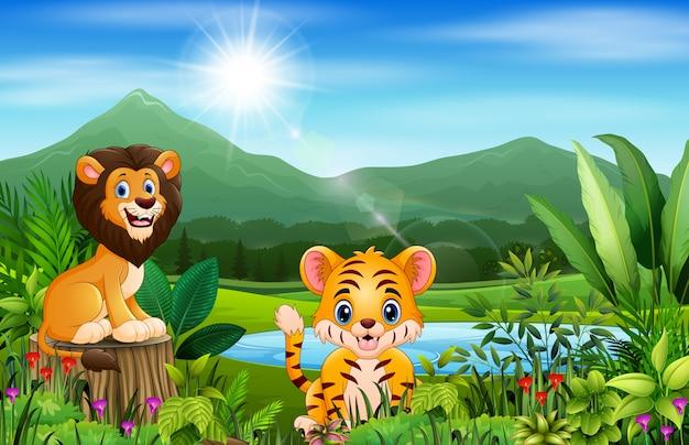 Paisagens da paisagem de montanhas com animais selvagens