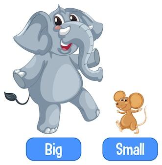 Palavras adjetivas opostas com grandes e pequenas