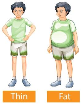 Palavras adjetivas opostas com magro e gordo