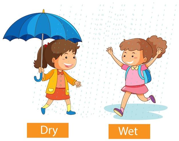 Palavras adjetivas opostas com seco e molhado