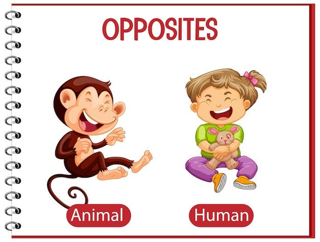 Palavras opostas com animal e humano