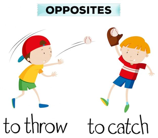 Palavras opostas com lance e captura