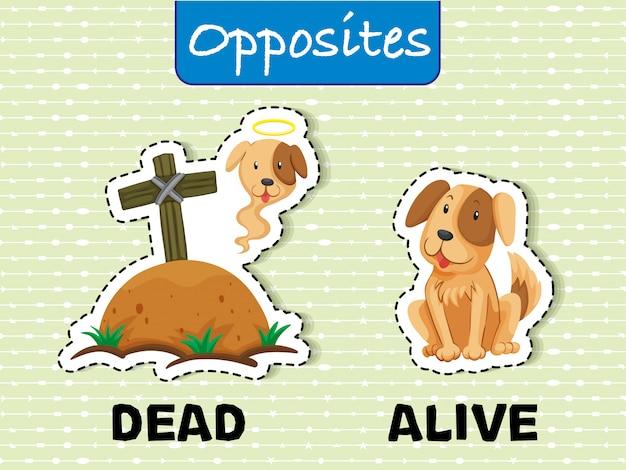 Palavras opostas para mortos e vivos