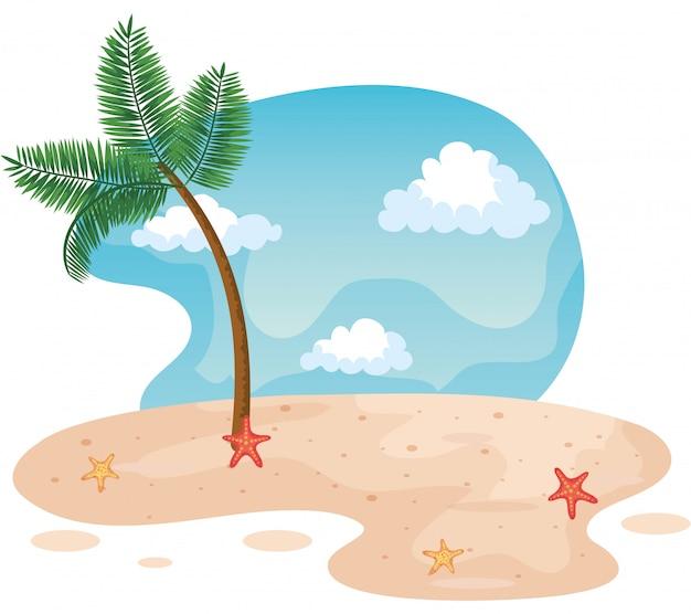 Palmeira na praia com estrelas do mar na areia
