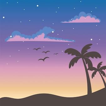 Palmeiras tropicais e pássaros ao pôr do sol