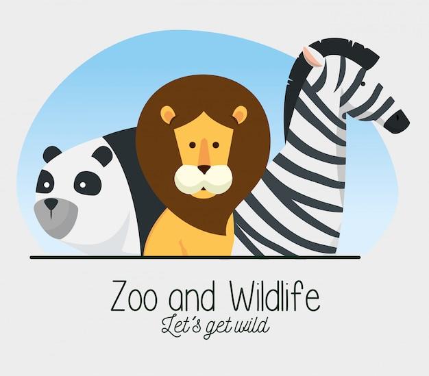 Panda com reserva de animais selvagens de leão e zebra