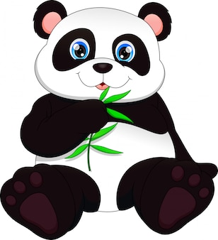Panda engraçado bebê fofo