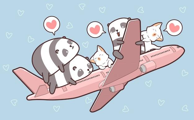 Pandas bonitos e gatos e no avião
