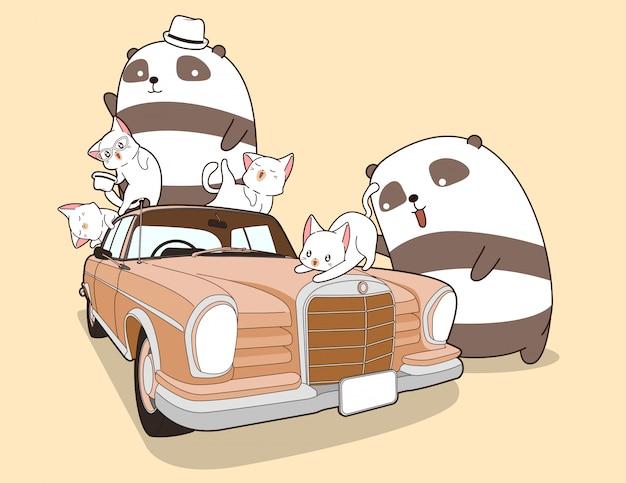 Pandas de kawaii e gatos com carros antigos.