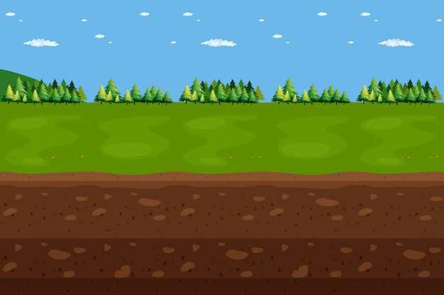 Panorama de paisagem florestal e subterrâneo