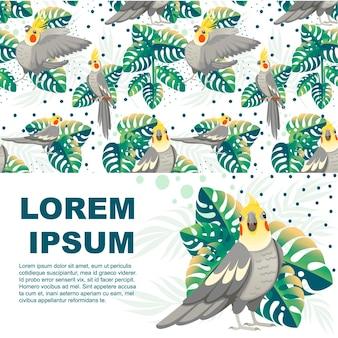 Papagaio adulto de periquito cinza normal (nymphicus hollandicus, corella) e folhas verdes tropicais desenho pássaro desenho ilustração em vetor plana no design de folheto horizontal de fundo branco.