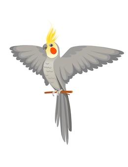 Papagaio adulto de periquito cinza normal sentado no galho e agitando sua asa ilustração vetorial