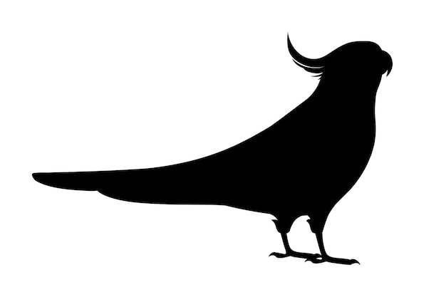 Papagaio adulto silhueta negra de periquito cinza normal (nymphicus hollandicus, corella) desenho animado pássaro design ilustração vetorial plana isolada no fundo branco.