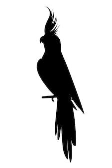 Papagaio adulto silhueta negra de periquito cinza normal sentado no galho (nymphicus hollandicus, corella) desenho animado pássaro design ilustração em vetor plana isolada no fundo branco.