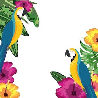 Papagaio arara com flores e folhas de fundo