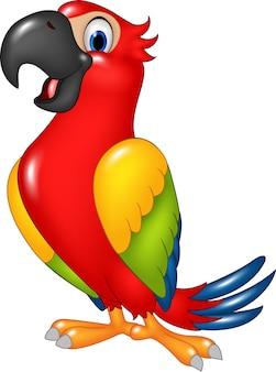 Papagaio bonito dos desenhos animados