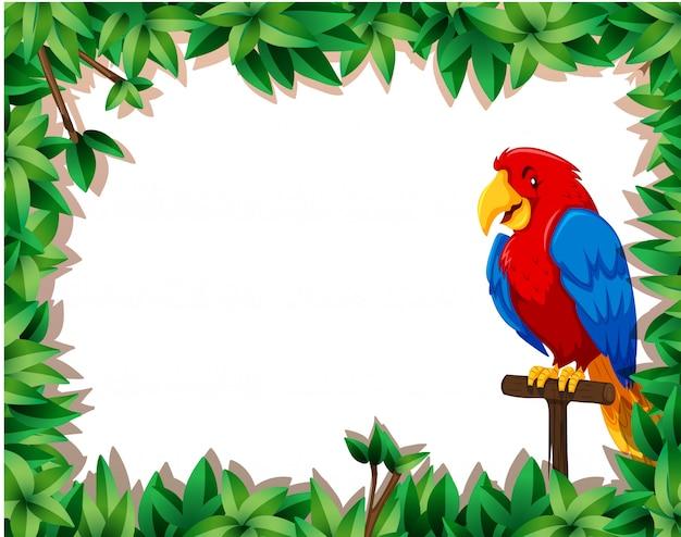 Papagaio com moldura de natureza