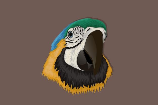 Papagaio desenhado à mão realista