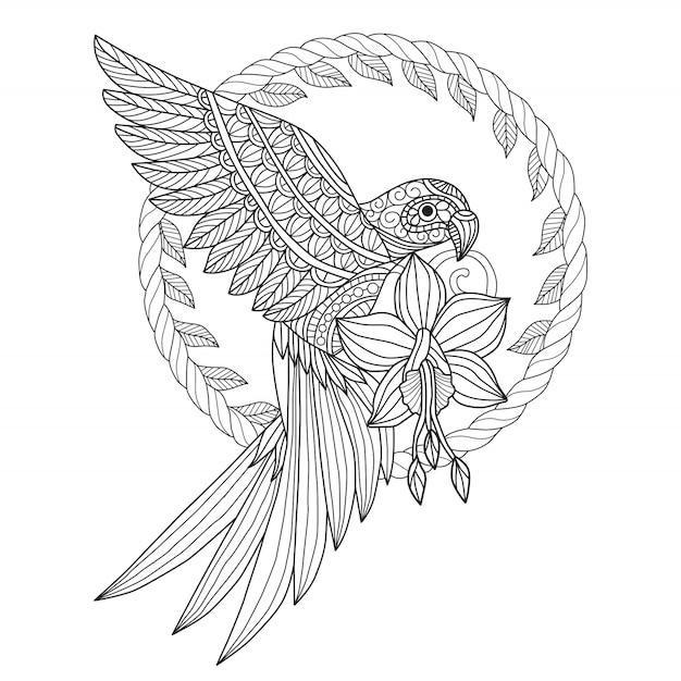 Papagaio e flor de mão desenhada