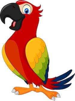 Papagaio engraçado dos desenhos animados, isolado no fundo branco