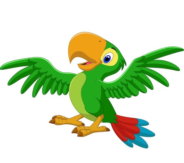 Papagaio feliz dos desenhos animados, isolado no fundo branco