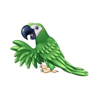Papagaio verde dos desenhos animados