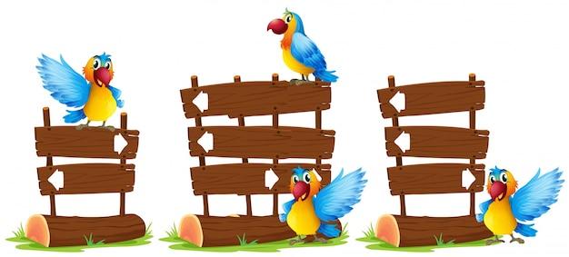 Papagaios pela ilustração de sinal de madeira