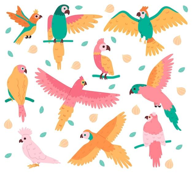 Papagaios tropicais. pássaros coloridos da selva, cacatua fofa, jaco e periquito