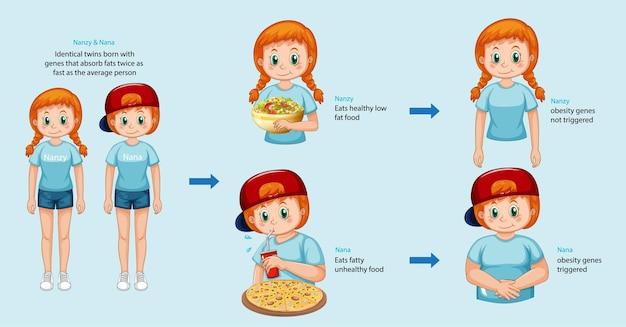 Papéis dos genes e do meio ambiente. infográfico de gordura corporal em gêmeos idênticos.