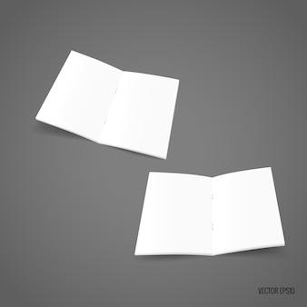 Papel de modelo branco bifold